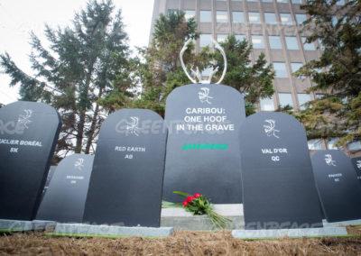 Action ˆ Gatineau pour la protection des caribous